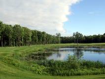 森林高尔夫球池塘 库存照片