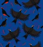 森林鸟群 库存图片
