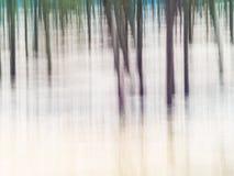 森林-抽象印象主义者的模糊的背景 库存图片