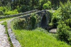 森林围拢的老石桥梁 免版税库存图片