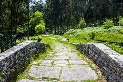 森林围拢的老石桥梁 免版税库存照片