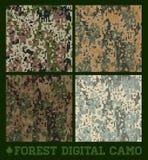 森林-无缝的传染媒介数字式卡莫 免版税库存照片
