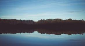 森林主题的背景 库存照片