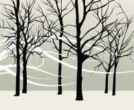 森林 向量例证