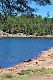 森林Canyon湖,可可尼诺县,亚利桑那,美国 库存图片