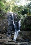 森林kalakayam喀拉拉mankayam瀑布 库存照片