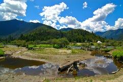 森林lunang天空 免版税图库摄影