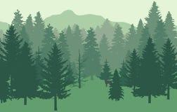 森林nr1绿色冷杉 库存例证