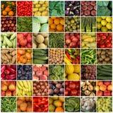 49棵菜和果子拼贴画 库存照片