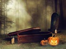 棺材和万圣夜南瓜 向量例证