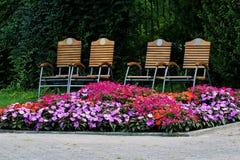 椅子和折扣多彩多姿的花的,公园 图库摄影