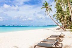 椅子和棕榈树在沙子靠岸,热带假期 免版税库存照片