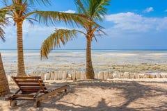 椅子和绿色树在白色沙子靠岸。Watamu,肯尼亚 免版税图库摄影