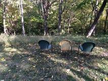 椅子在森林 免版税库存照片