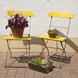 椅子庭院黄色 免版税库存图片