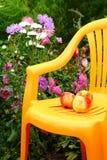 椅子庭院 库存图片