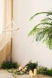 植物、蜡烛和吊床在屋子里 库存照片