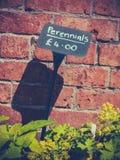 植物出售标志 库存图片