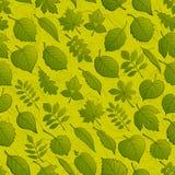 植物叶子,无缝 免版税库存图片