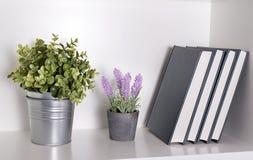 植物和书 库存图片