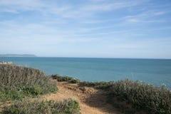 植物和含沙walknear海洋 图库摄影