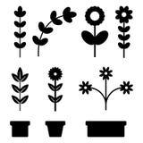 植物和家庭花象集合传染媒介 库存图片