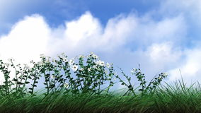 植物和花卉生长 皇族释放例证