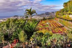 植物园在丰沙尔,马德拉岛,葡萄牙 图库摄影