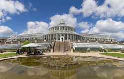 植物园在哥本哈根,丹麦 库存照片