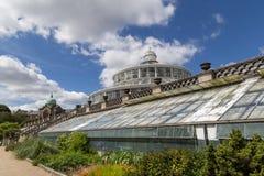 植物园在哥本哈根,丹麦 免版税库存照片