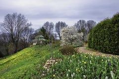 植物园在威斯康辛 库存图片