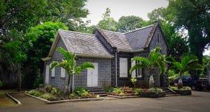 植物园在毛里求斯 免版税库存图片