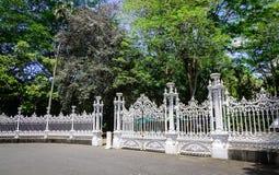 植物园在毛里求斯 免版税图库摄影