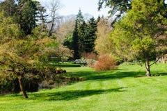 植物园在都伯林 免版税库存照片