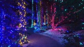 植物园在Boothbay,缅因 库存照片