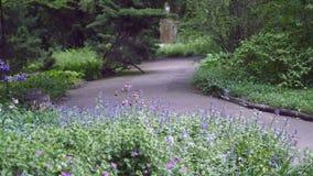 植物园小径和风景 免版税库存图片
