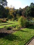 植物园布朗斯维克 免版税图库摄影