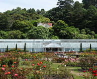 植物园惠灵顿 库存图片