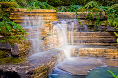 植物园瀑布 库存图片
