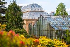 植物园用五颜六色的开花的杜鹃花和more=der 库存图片
