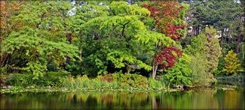植物园,哥本哈根丹麦 库存照片