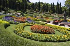 植物园 库存图片