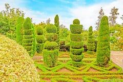 植物园 免版税库存图片