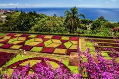 植物园Monte,丰沙尔,马德拉岛,葡萄牙 免版税库存图片