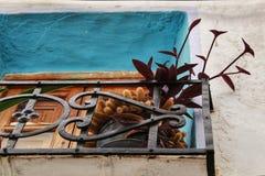 植物在一个阳台上在切尔瓦,巴伦西亚 免版税库存图片