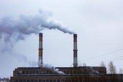 植物在城市,大气污染 库存照片