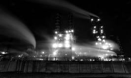 植物在晚上,黑白,长的曝光发光 免版税库存照片