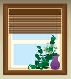 植物在窗口里 免版税库存图片