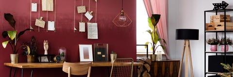 植物在红色客厅 免版税图库摄影