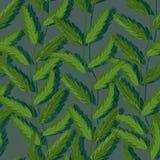 植物垂直的绿色无缝的样式 库存图片